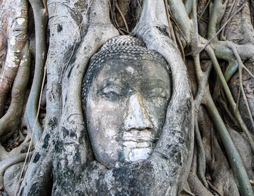 Mat Thai 2 116 (Copier)