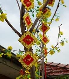 Where are the Chinese New Year Festivals in Sydney 2011?