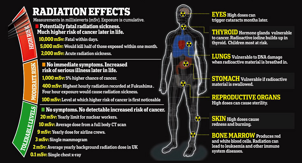 radiation level at fukushima Noor\u0027s List