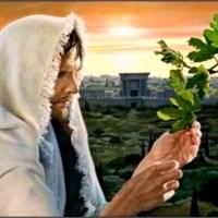 Renungan Religius: Ketika Yesus Lapar (Lu rese kalo lagi lapar!)
