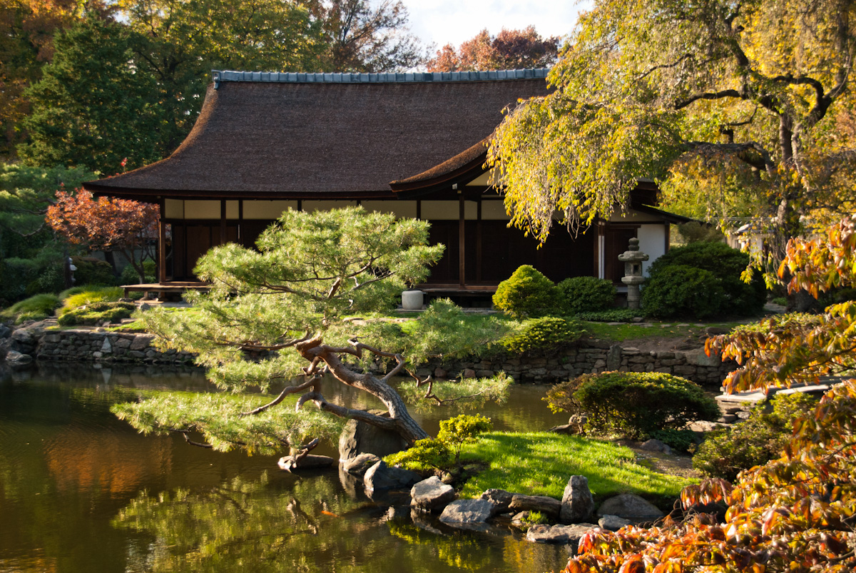 Home Japanese Garden Garden Updates – Moments Of Ma