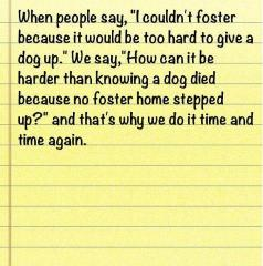 why foster