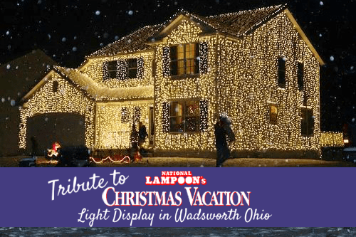 Tribute To National Lampoon39s Christmas Vacation Light Display
