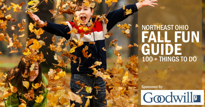 Ultimate Fall Fun Guide - 100+ Things to do this Fall