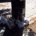 RUFF picked up bag loads of trash last Sunday, shown here on the Prado. (Photo by RUFF)