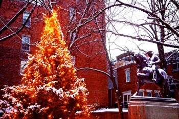 Prado Tree and Paul Revere Statue after Feyhr Snow Storm - Dec 2012 - Photo by Matt Conti