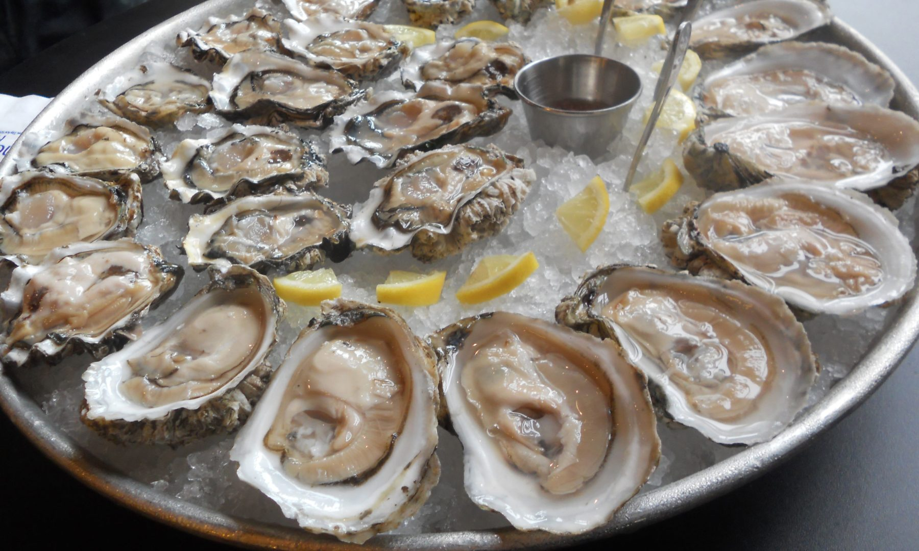 oysters_Jameson Fink-cropped