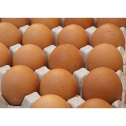 Small Crop Of Cost Of Eggs