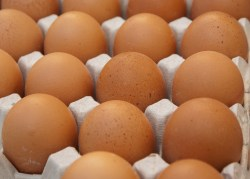 Small Of Cost Of Eggs