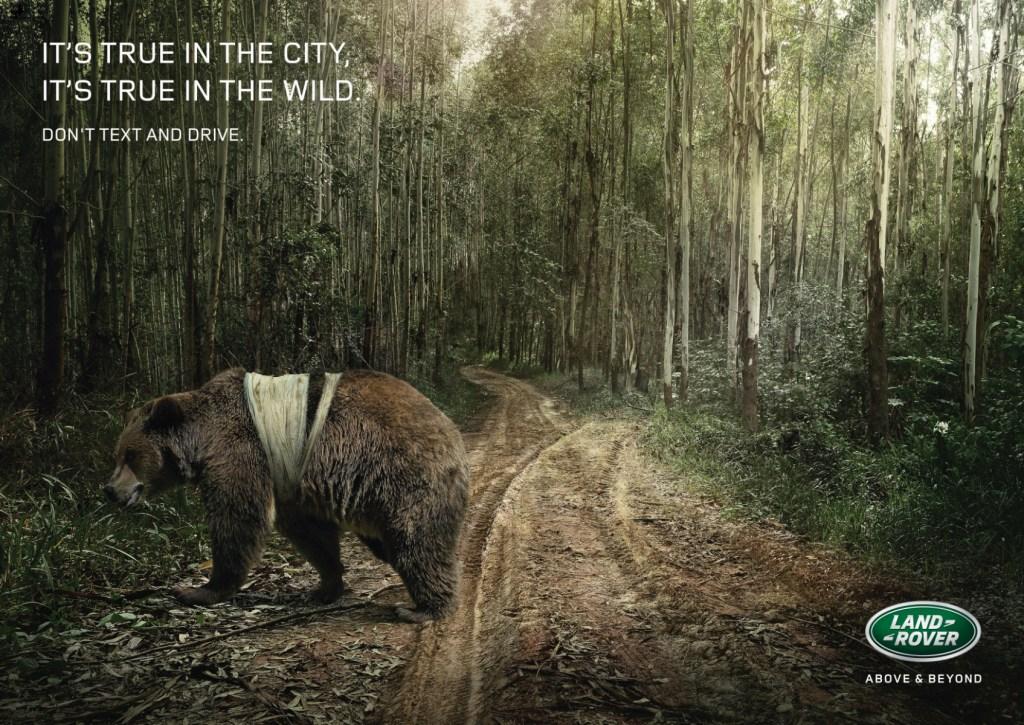 Land Rover - Bear