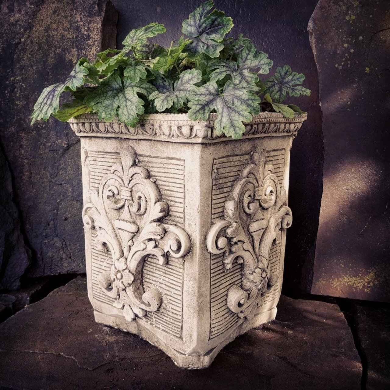 Planter Lys En Pot Fleur De Lys Planter Pot