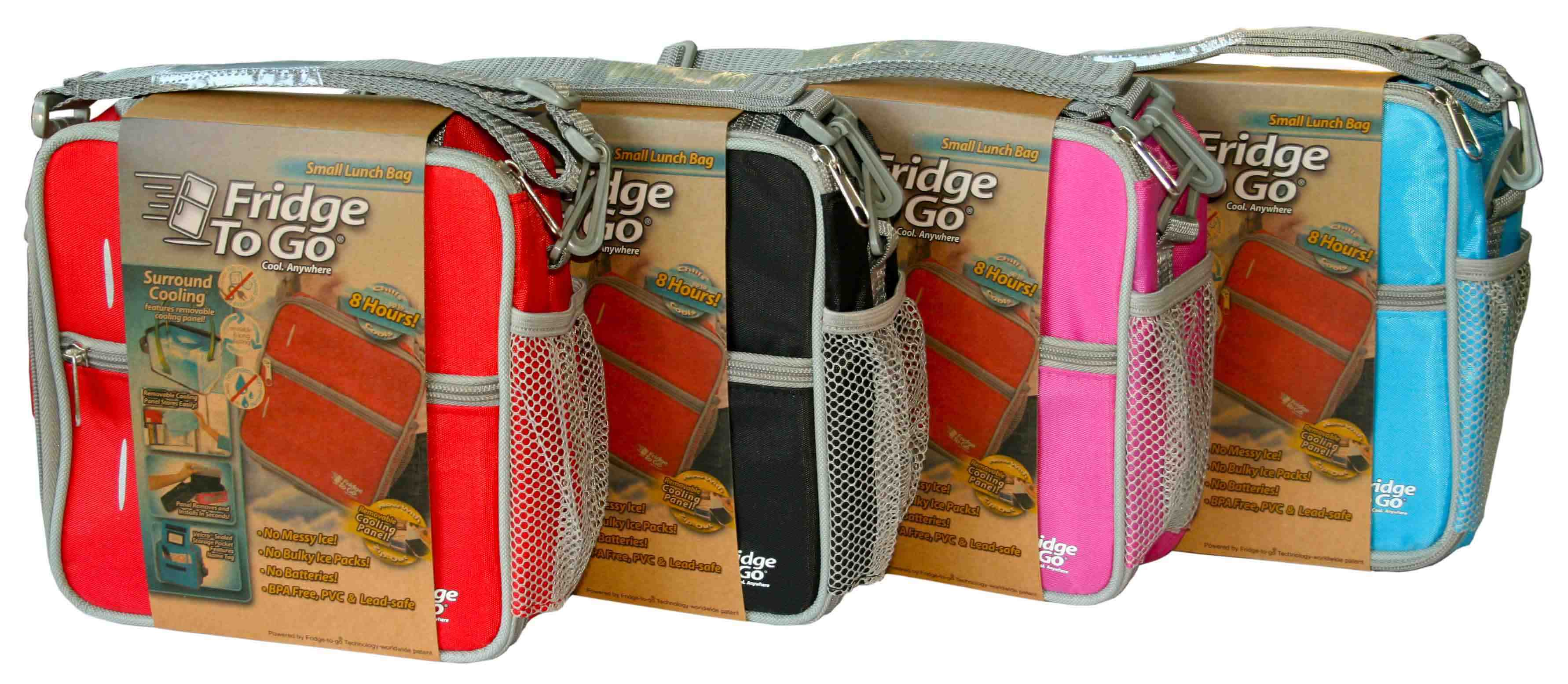 Esky Cooler Bag Fridge To Go Small Cooler Bag Lunch Box Esky Keep Cool For 8 Hours