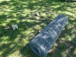 Relaxing A Roll Galvanized Wire How To Make Your Own Tomato Cages Not Dabbling Normal Texas Tomato Cages Diy Texas Tomato Cages Home Depot