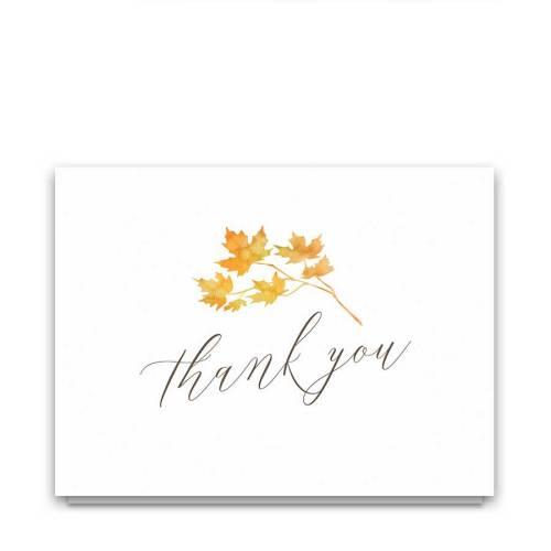 Medium Of Thank You Postcards
