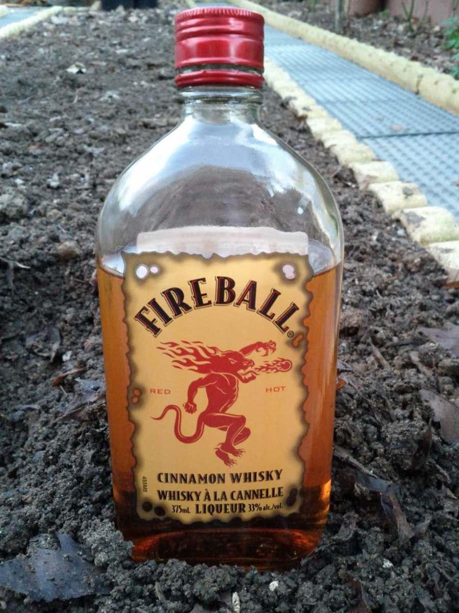 Fireball: el whisky de canela que beben los canadienses (y que te deja tan calentito como una patada voladora de Chuck Norris)