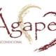 Editora secular Novo Século lança a Editora Ágape, voltada para publicações cristãs