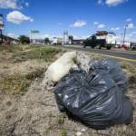 Bolsas de basura en la carretera de Matilla 2016