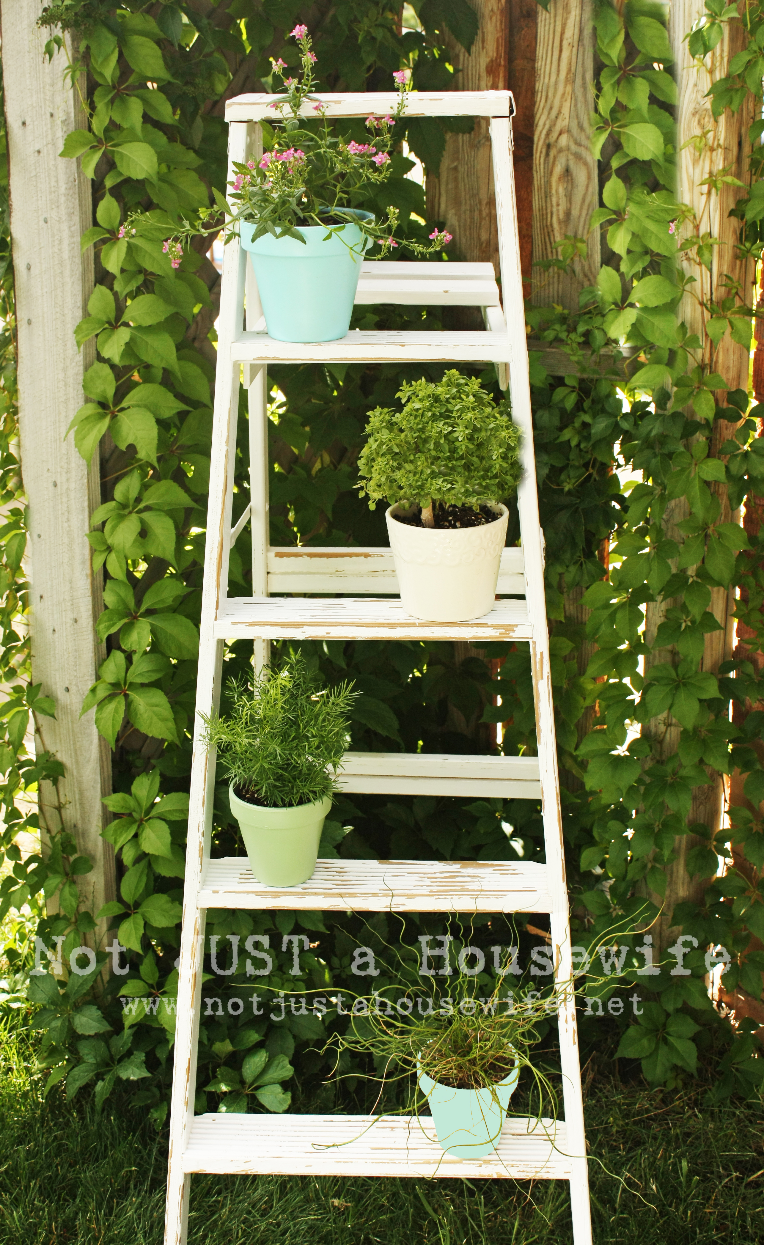 Herb Garden Plant Stands How To Decorate Outdoor Pots Of Plants Home Decorating Ideas