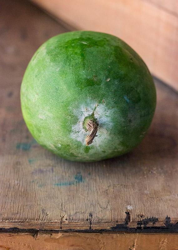 Chalkumro/Ash gourd
