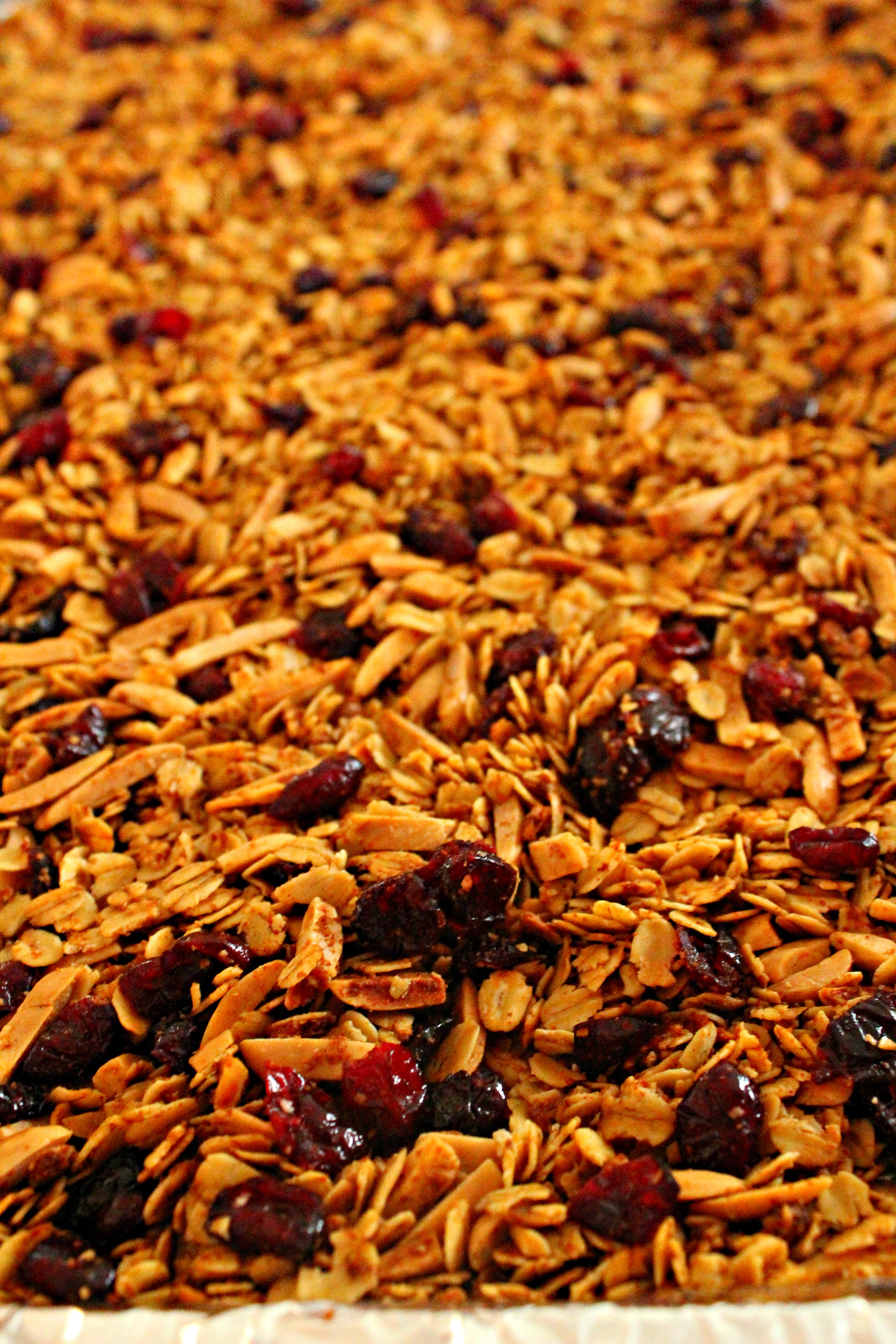 Cranberry Almond Granola - Not Too Shabby Gabby