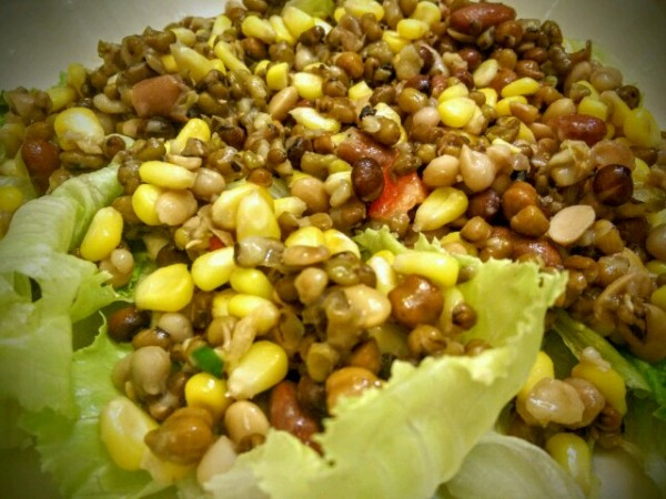 Beans and corn are a vital part of the 7 bean salad