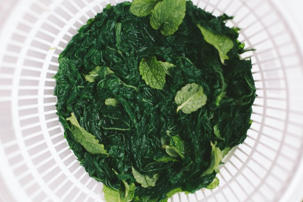 Mint & Nettle Pesto // Not Without Salt