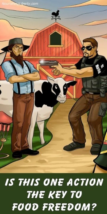 noncompliance Key to Food Freedom