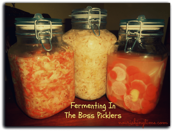 Vegetable ferments in The Boss Pickler by Primal Kitchen