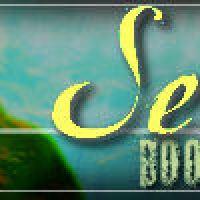 Sea author Heidi R. Kling Guest Blog: Pursuing Your Dreams