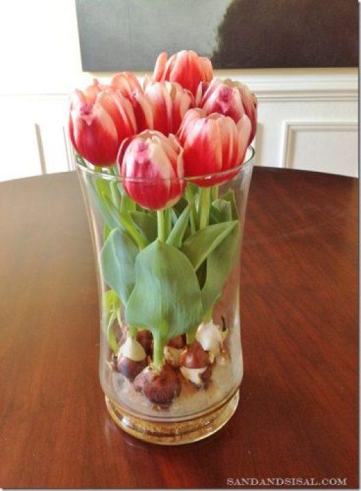 Сажать тюльпаны в доме 197