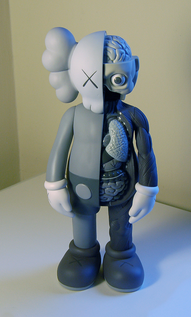 Designervinyl Kaws – The Dissected Companion 5yl – Mono | Nowhere