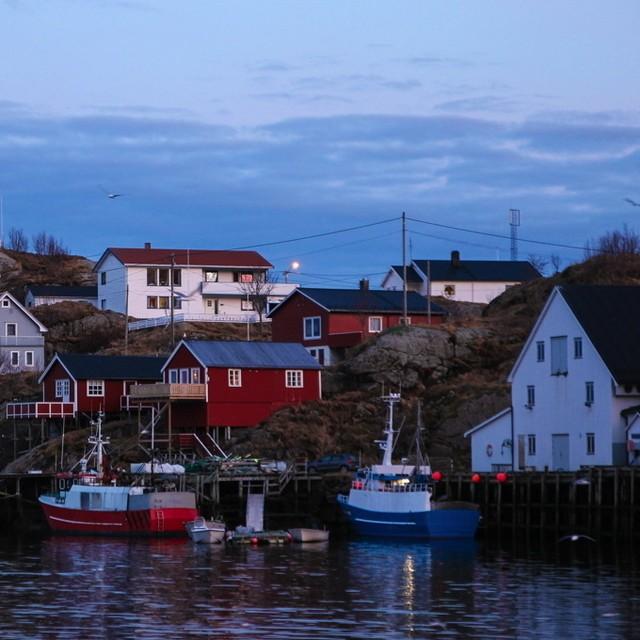 Arrive sur les les Lofoten en Norvge les paysages bucoliqueshellip