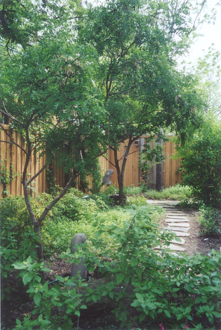How to design native landscapes for Garden design with native plants