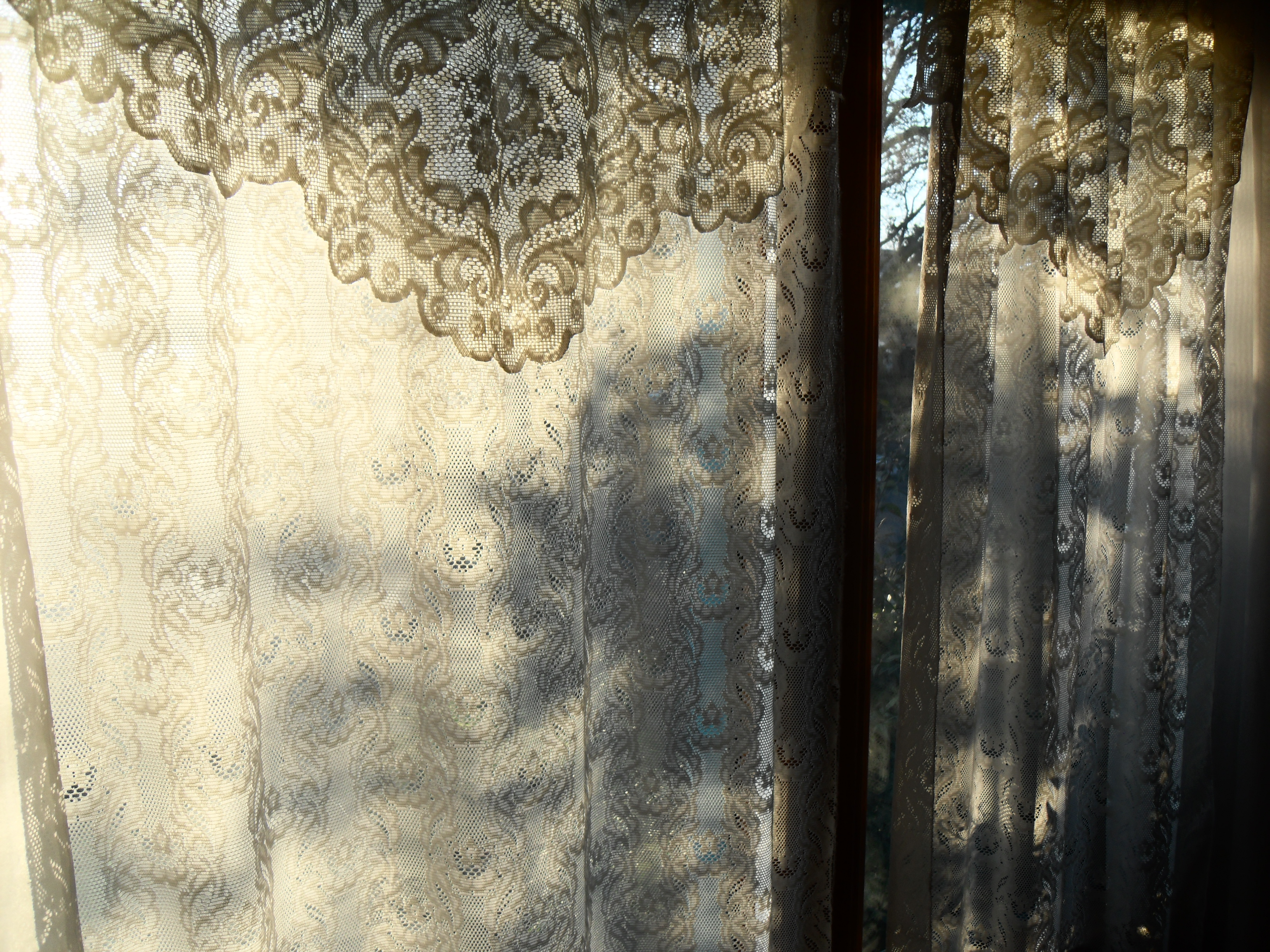 French Lace Curtains White Lace Curtains On A Winter Afternoon Ii Centuries Since The Day