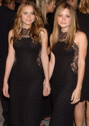 sexy twins in see through dresses
