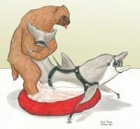 BDSM  dolphin/bear love