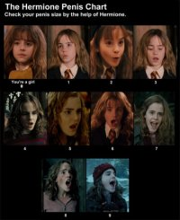 Hermione penis chart