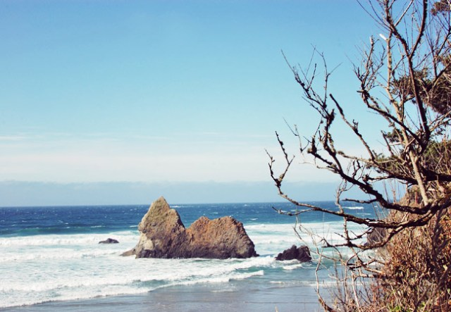 Nubby Twiglet | Cannon Beach at the Oregon Coast