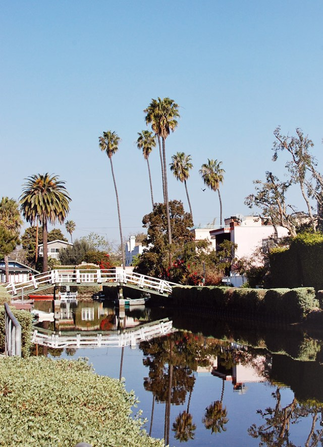 Nubby Twiglet | Venice Canals