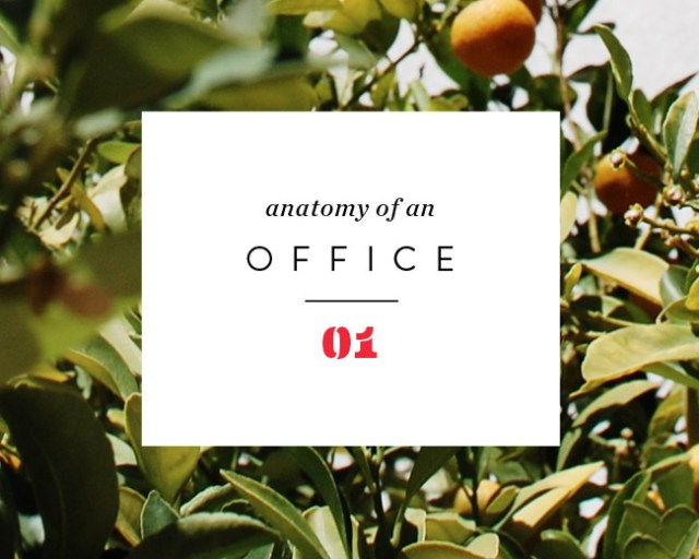 Nubby Twiglet | Anatomy Of An Office #1: The Vision and Goals