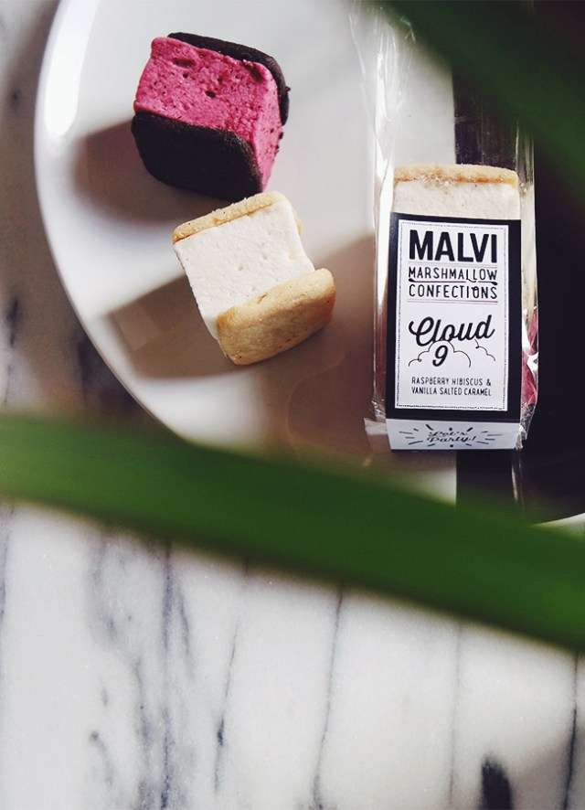 Nubby Twiglet | Malvi Marshmallows