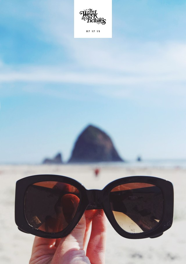 Nubby Twiglet   The Week In Pictures: Cannon Beach