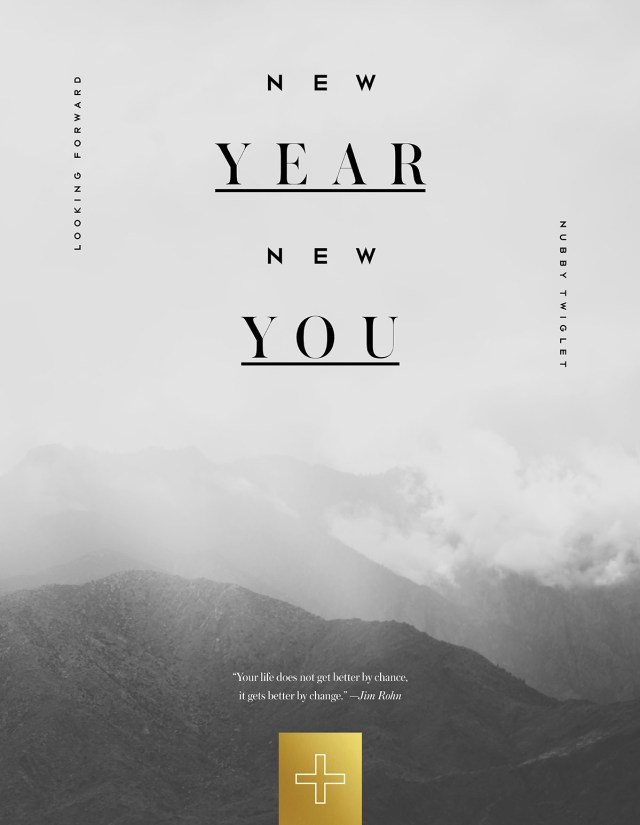 Nubby Twiglet | New Year. New Schedule. New Goals.