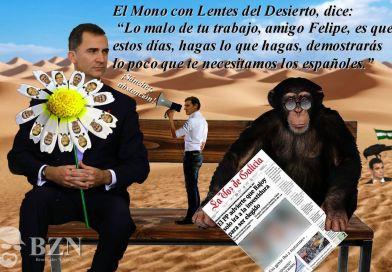 6- El mono con lentes del desierto dice… | Bezerradas Nocturnas