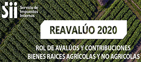 reavaluo2020SII