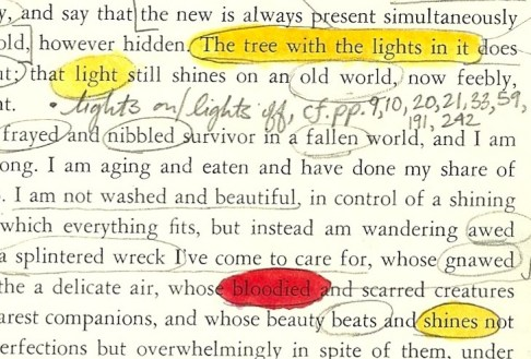 pilgrim page 242 light crop