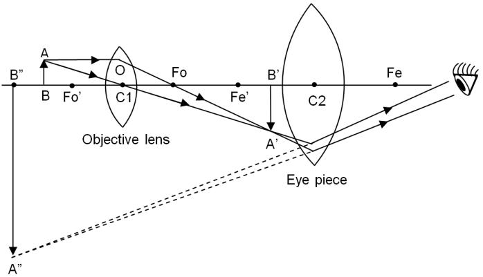 ray diagram light microscope