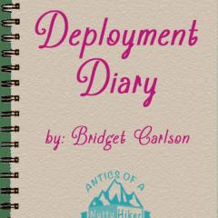 Deployment Diary: NTC….Check!!!