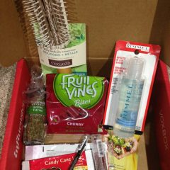 Frosty VoxBox Review
