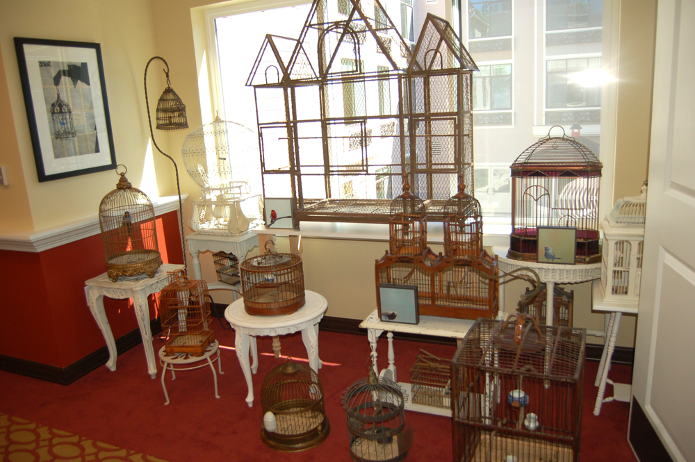 Bird cages (Photo by Rebecca Ip/SCP)